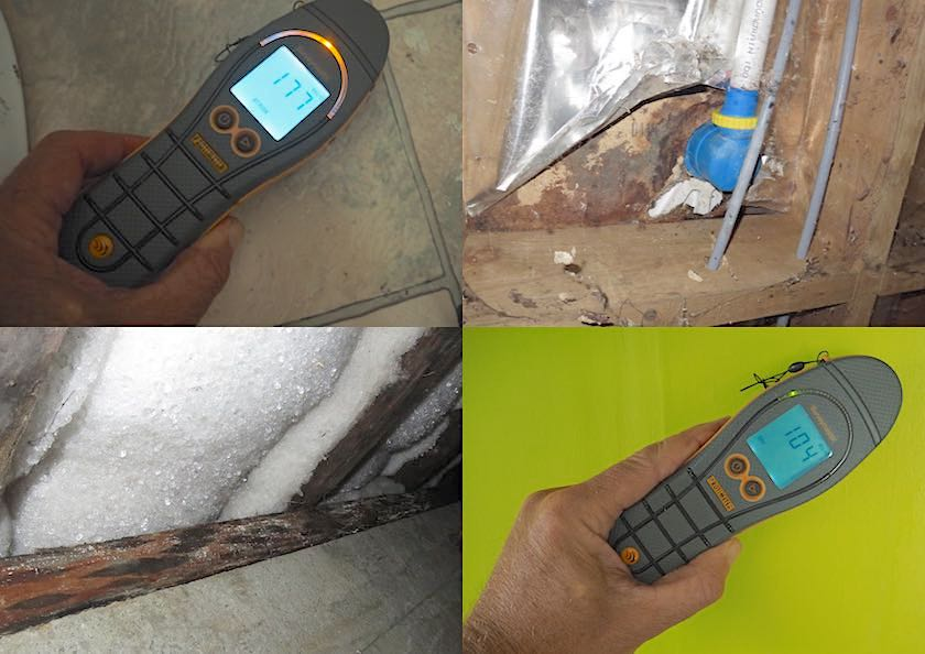 pre-purchase house inspection moisture testing with a Protimeter Surveymaster. Nelson Building Reports.